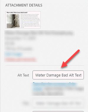 Water Damage Alt Text Location in Wordpress