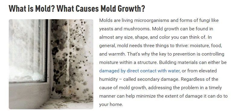 Water Damage Bad Alt Text Example