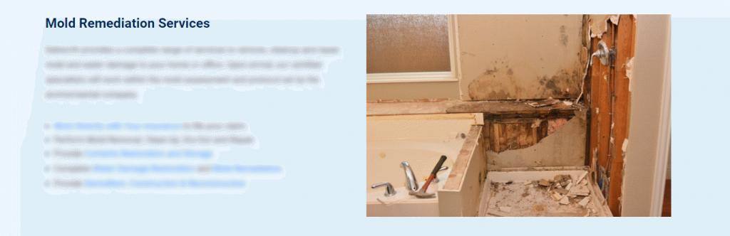 Dalworth Restoration Mold Image Example