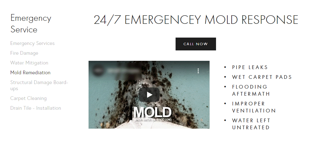 Mold Video Example