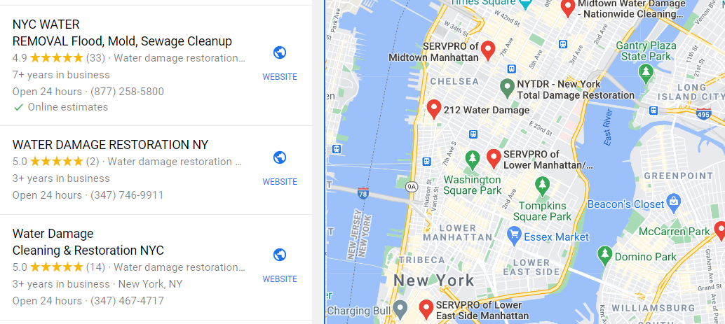 Water Damage Local SEO Example