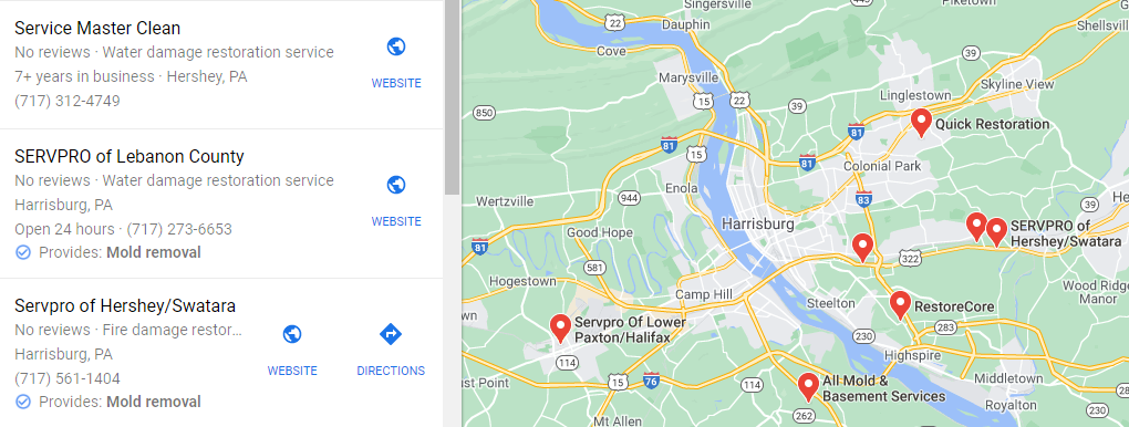 Mold Removal Local SEO Example
